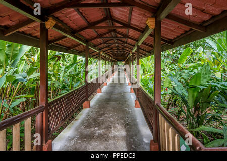 Aninga Evergreen Lodge, Guesthouse-Tortuguero National Park, Costa Rica - Stock Photo