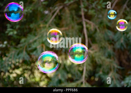 Six colorful, mostly soap bubbles at the green background in a garden - Stock Photo