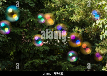 Group of colorful, out of focus soap bubbles at the green background of trees and bushes - Stock Photo
