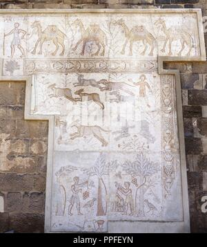 Syria. Bosra (Busra al-Sham). Daraa District. Roman mosaic from the 6th century discovered in the Theatre. Top: Camel caravan. Central zone: Hunting (dogs chasing hare). Lower zone: agricultural work (harvest of dates and pigeon breeding). - Stock Photo