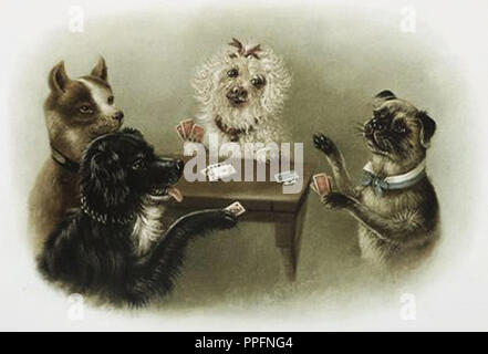 animals playing cards - Stock Photo