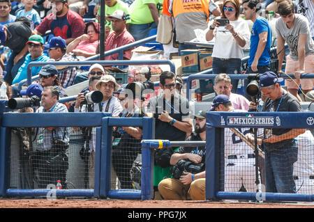 Fotografos de Monterrey. Reuters.  Acciones del partido de beisbol, Dodgers de Los Angeles contra Padres de San Diego, tercer juego de la Serie en Mex - Stock Photo