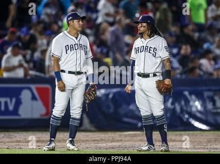 Christian Villanueva y Freddy Galvis de San Diego, durante el partido de beisbol de los Dodgers de Los Angeles contra Padres de San Diego, durante el  - Stock Photo