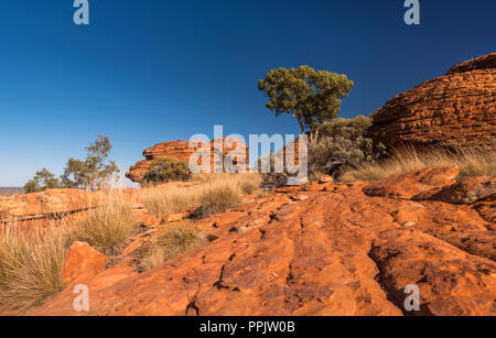Kings Canyon, Watarrka National Park, Nothern Territory Australia - Stock Photo