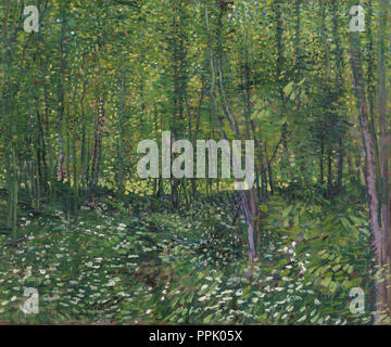 Trees and undergrowth. Date/Period: July 1887 - 1887. Landscape. Oil on canvas. Author: VINCENT VAN GOGH. - Stock Photo