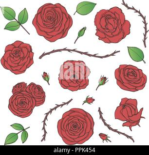 Vector set of red rose flowers with buds, leaves and thorny stems contours isolated on the white background. Hand drawn floral collection of blossoms  - Stock Photo