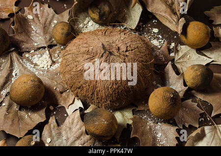 Coconut dry in half on a brown background, surrounded by dry and yellowish lemons, decorated with dried leaves, beautiful background for texts and dec - Stock Photo