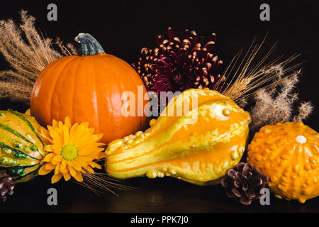 Autumn Harvest with Pumpkins, Gourds, Flowers and Grains on Dark Background - Stock Photo