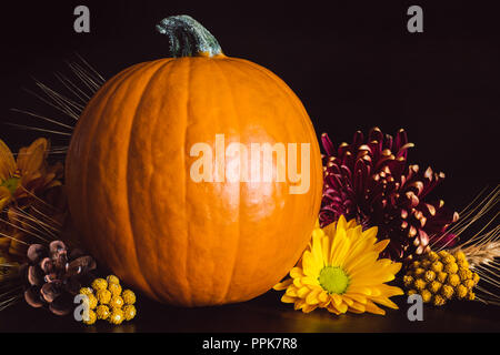Fall Collection with Pumpkin, Flowers and Wheat on Brown Table - Stock Photo