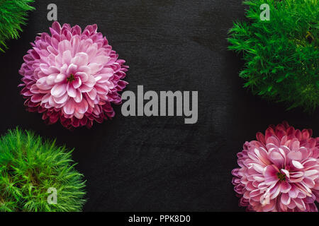 Pink Mums and Green Foliage on Black Table with Space for Copy - Stock Photo