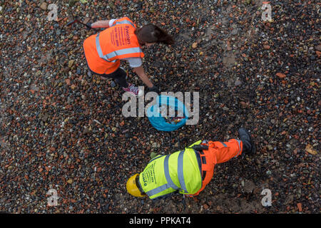 volunteers and people wearing high visibility clothing carrying out a beach clean on the banks of the river thames in central London. - Stock Photo