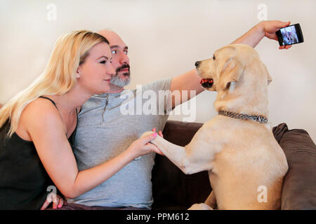 Couple with dog at home. Lovers happy handsome couple is making selfie and enjoy with their Yellow labrador retriever dog at house living room. Lovely - Stock Photo