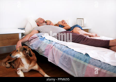 Rough collie dog is lying near to the bed and resting in morning, while his owners are sleeping on the bed in the bedroom. Young happiness couple. - Stock Photo