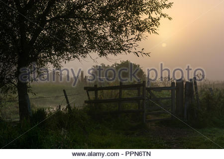 Burgate, Fordingbridge, New Forest, Hampshire, UK, 27th September 2018, Weather: Mist rises over the Hampshire countryside following a chilly night with light winds. The settled conditions are expected to bring a warm sunny autumn day to the south of England. Credit: Paul Biggins/Alamy Live News - Stock Photo