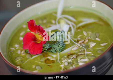 A bowl of healthy Green Goddess home-made soup made of freshly pureed organic greens and vegetables, kale, spinach, broccoli and - Stock Photo