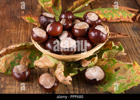 Chestnuts in retro basket on desk with fallen dry leaf. Autumn concept background. Close up, selective focus - Stock Photo