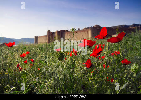 Old castle in Kazakhstan. Fortresses of nomads. The walls and gates of the old fortress of stone and lined with patterned tiles. Battle towers guardin - Stock Photo