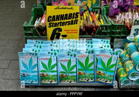 Cannabis, Bloemenmarkt, Singel, Amsterdam, Niederlande - Stock Photo