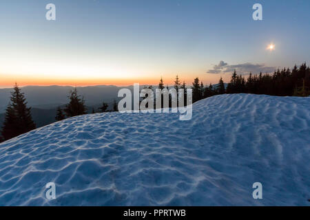 Fantastic view of evening in winter mountains. Dark green tops of pine trees behind snowy hill and first bright star in quiet blue sky with orange glo - Stock Photo