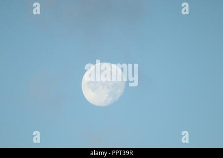 Full harvest moon in the night and day sky.blue sky scattered fluffy clouds - Stock Photo