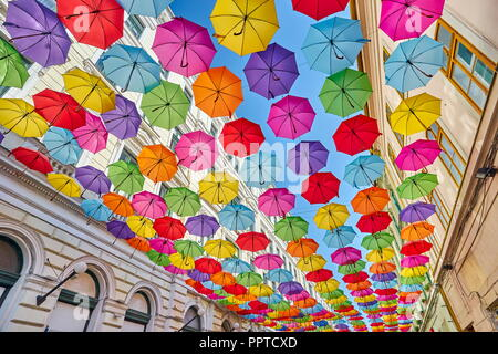 Street with colored umbrellas decoration, Timisoara city, Romania