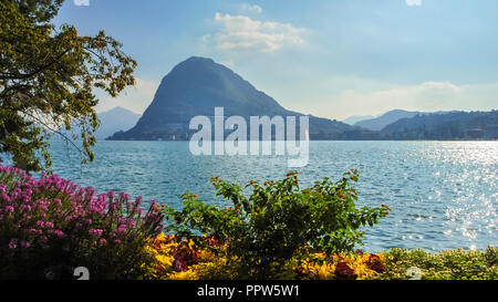 Nice, colorful flowers at the boulevard of Lake Lugano (Ticino, Switzerland) on a sunny, late september day. - Stock Photo