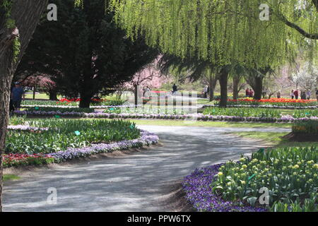 Pathway under willow tree, amongst flowers in beautifully landscaped Tulip Top Garden, NSW, Australia - Stock Photo