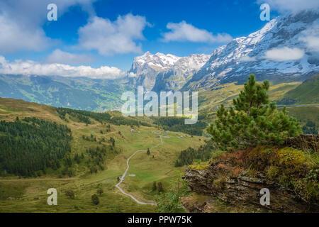 View from Kleine Scheidegg towards Grindelwald (Berner Oberland, Switzerland). The Kleine Scheidegg is a mountain pass and means minor watershed - Stock Photo