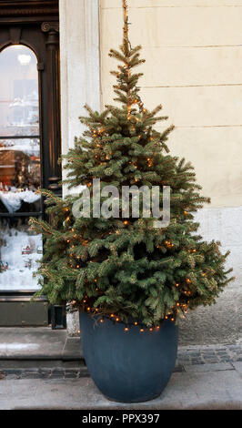 Christmas tree with luminous garland in flower pot near house wall - Stock Photo