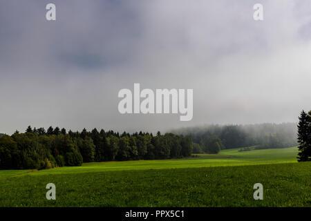 Sonne bricht durch den Nebel am Morgen, Wiese und Wald im Voralpenland, Bayern - Stock Photo