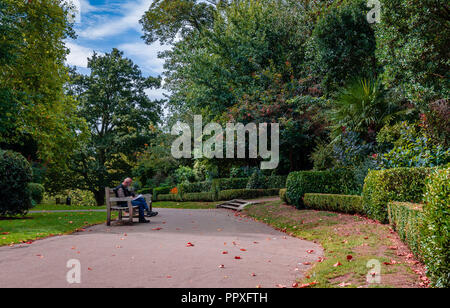 London, UK - September 16, 2018: An unidentified man reads his newspaper in the Waterlow Park, in Highgate Village, north London, on a Sunday morning. - Stock Photo