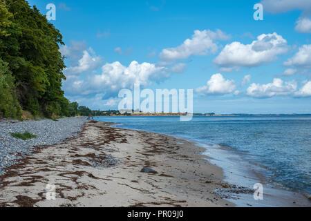 Beach of Fanefjord Skov at the Southwest side of Moen Island, Denmark, Scandinavia, Europe. - Stock Photo