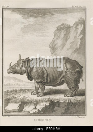 Le Rhinoceros, Histoire naturelle, générale et particulière: avec la description du cabinet de roi, Buffon, Georges Louis - Stock Photo