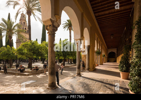The Great Mosque (Cathedral of Our Lady of the Assumption) (Mezquita) of Cordoba, UNESCO World Heritage Site, Cordoba, Andalucia, Spain, Europe - Stock Photo