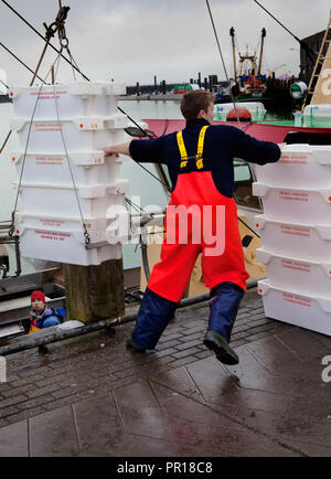 Fishermen unloading their catch on the quayside, Breskens harbour, The Netherlands. - Stock Photo