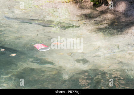 Floating rubbish - an empty glass floats on the surface of the river with trout under the water - Stock Photo