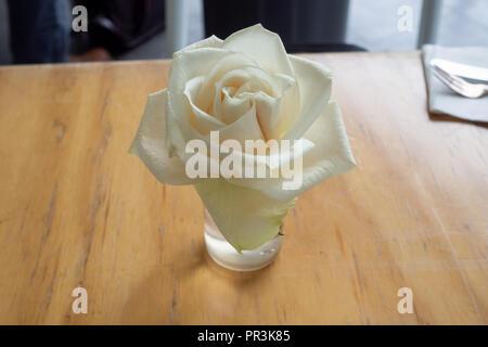 White rose on table - Stock Photo