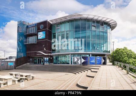 2 June 2018: Plymouth, Devon, UK - The National Marine Aquarium. - Stock Photo