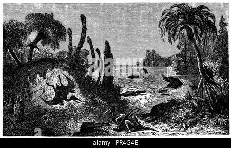 Jurassic landscape with Rhamphorhynchus, Pterodactylus, Teleosaurus, Ichthyosaurus, Plesiosaurus and Marsupial, J. Varrone  1890 - Stock Photo
