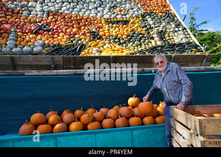 Slindon Village, West Sussex, UK. 29th September 2018. Robin Upton stands in front of his pumpkin display, opening next week, which this year commemorates the hundredth anniversary of the RAF, the centenary of the Armistice and his family's 50 years of growing pumpkins. It runs from October to November (peaking around Halloween) and comprises of around 100 different varieties of pumpkin and squash.Credit Gary Blake/Alamy Live News - Stock Photo