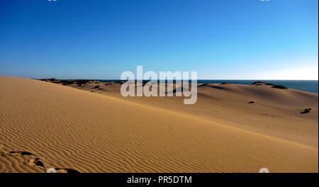 Ningaloo Reef sand dunes surrounded by spinifex and the Cape Range National Park - Stock Photo
