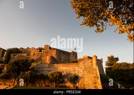 The Château Royal, glowing in the light of the early morning, at Collioure, southern France - Stock Photo