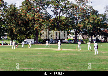A Sunday cricket match in Springfield Park by the River Lea, London, UK - Stock Photo