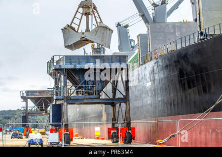 Cargo being unloaded from Sagar Kanta into Hopper - Stock Photo
