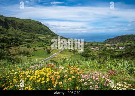 Green coastline of Flores island, Azores, Portugal - Stock Photo
