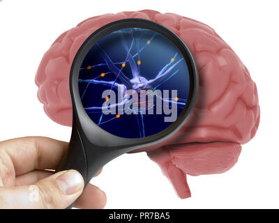 Magnifying glass on human 3d brain neurons activity isolated on white - Stock Photo
