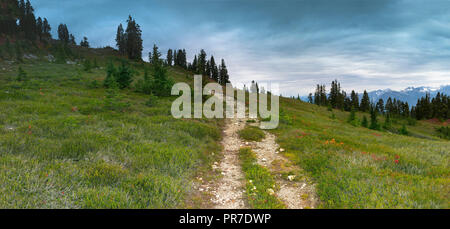 The scenic landscapes of the Elfin Lakes Trail in Whistler BC Canada. - Stock Photo