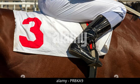 Jockey in the saddle before horse race with the starting number three. - Stock Photo