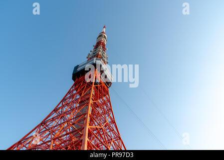Tokyo tower and Sakura Cherry blossom in spring season at Tokyo, Japan. - Stock Photo