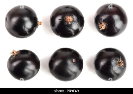 black currant isolated on white background. Top view. Flat lay pattern. Set or collection - Stock Photo